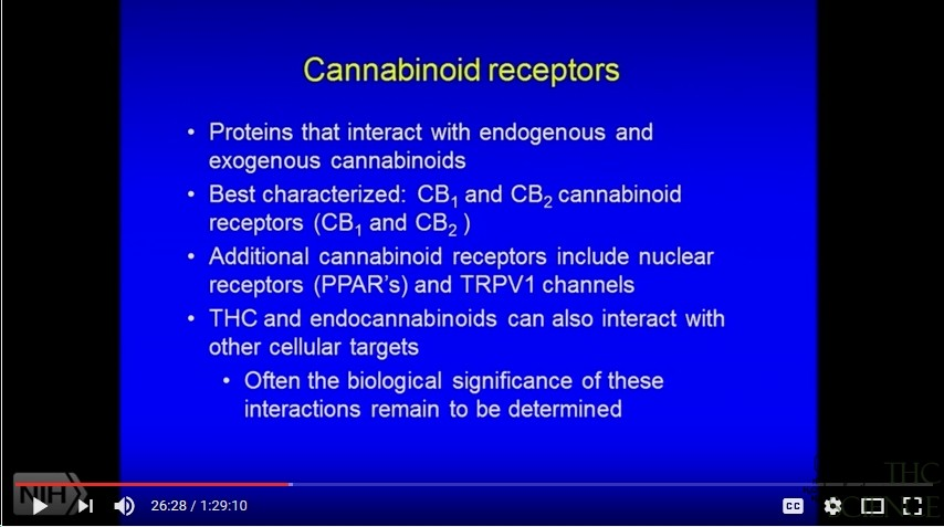 Understanding Endocannabinoid System video